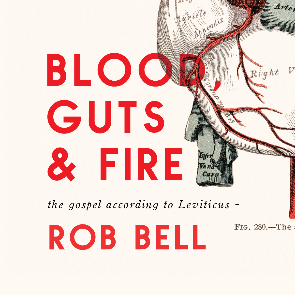 Blood, Guts & Fire: The Gospel According to Leviticus